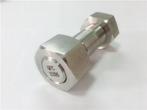 No.75-Ang taas nga kalidad nga duplex 2205 stainless steel stud bolt